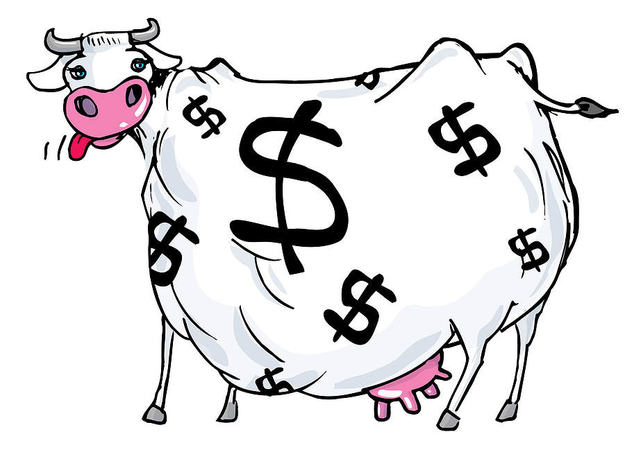 cash-cow-investment