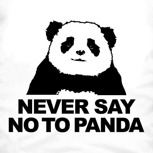 never-say-no-to-panda1