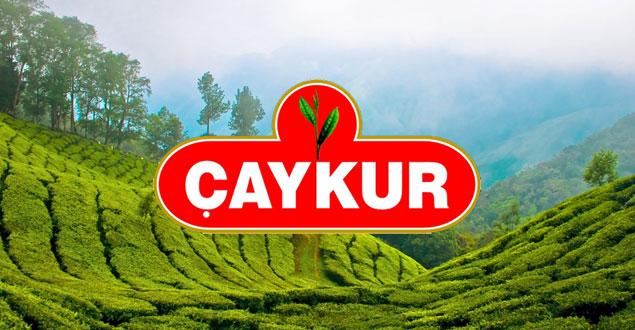 Türkiye, 2016 Yılında 86 Ülkeye Çay İhracatı Yaptı