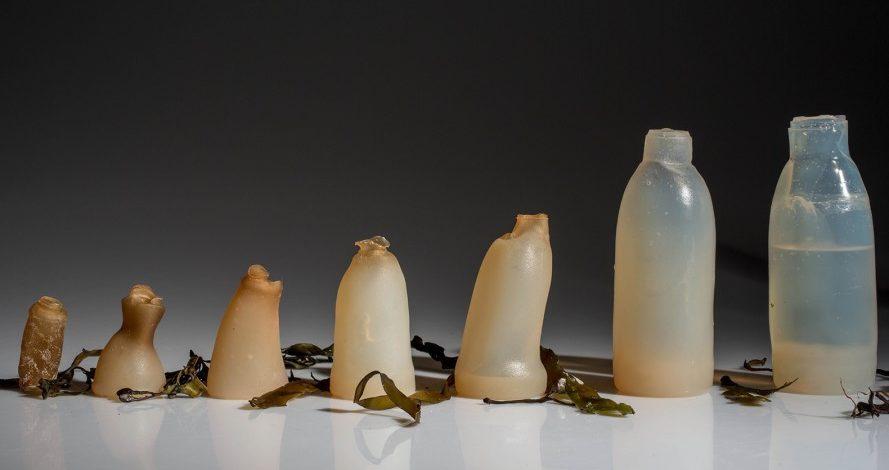 Plastik Şişelere Alternatif; İçindeki Su Bitince Doğaya Karışan Şişe
