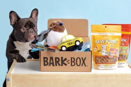 Abonelerinin %95'ini Elinde Tutmayı Başaran Abonelik Servisi: BarkBox