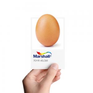 Marshall, Instagram'da En Çok Beğeni Alan Yumurtaya Atıfta Bulundu