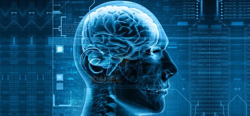 Tarihte İlk Defa Bir İnsanın Beyin Dalgaları Sözcüklerle Anlamlandırıldı