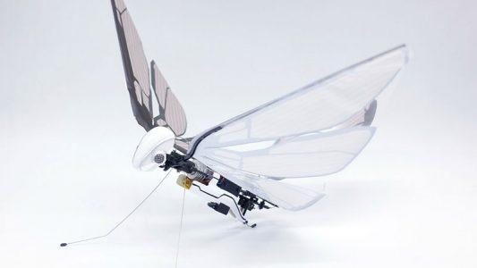 İşte Böceklerden Esinlenen Yeni Dron; MetaFly!