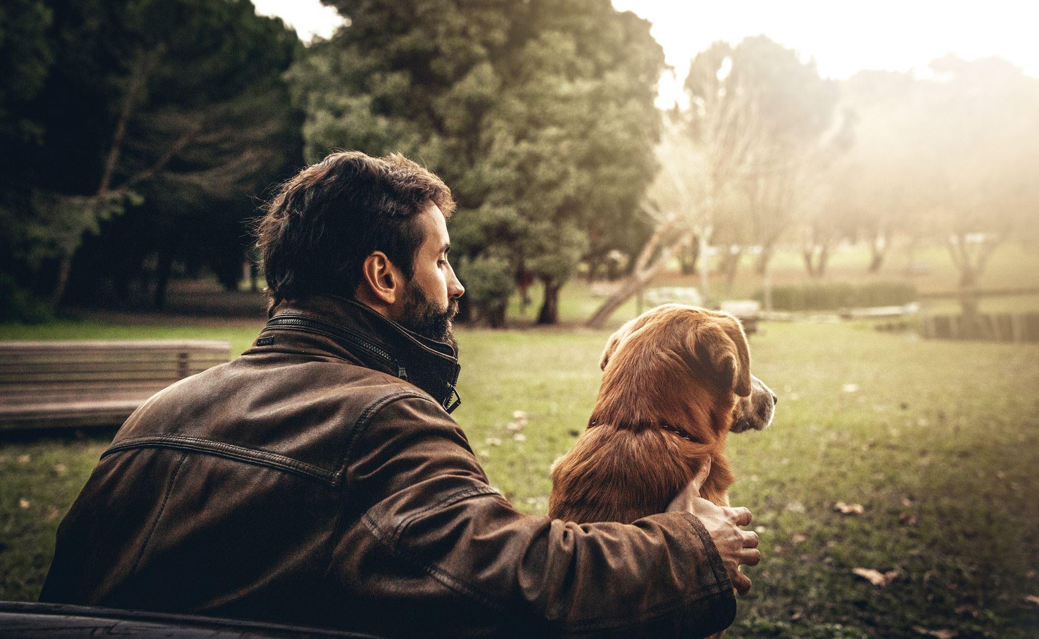 Köpek Maması Kutu Aboneliği Girişimi Barkyn 1.7 Milyon Euro Yatırım Topladı