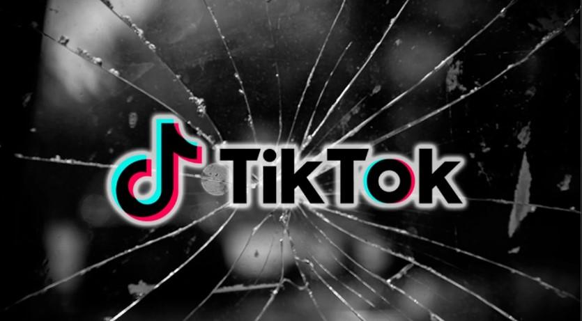 Hindistan Hükümeti, Google ve Apple'ın TikTok'u Mağazalarından Kaldırmasını İstiyor