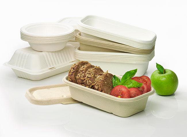 Gelecekte Gıdalarımızı Plastik Değil, Süt Esaslı Paketler Koruyacak!