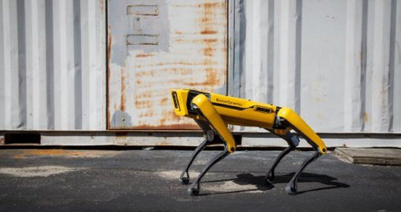 Boston Dynamics'in Robot Köpeği 'Spot' İlk Sahipleriyle Tanışacak