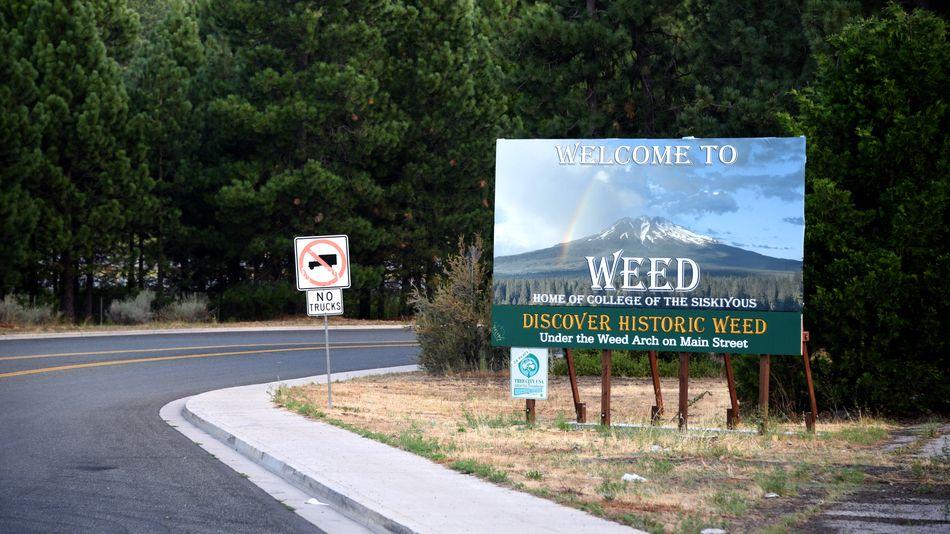 Colorado'da Esrar Firmaları Otoyollara Sponsor Olarak Otoyol Levhalarına Reklam Veriyor