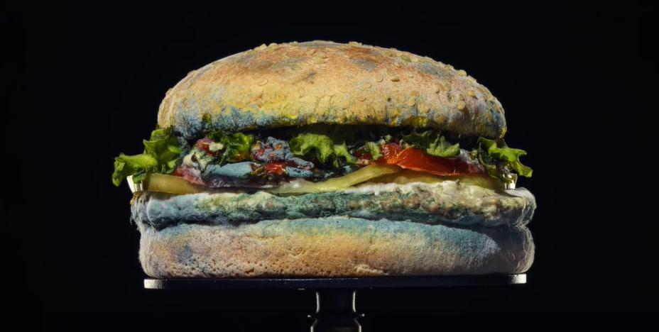 Burger King, Koruyucu Madde İçermediğini Küflü Hamburgeri ile Kanıtladı