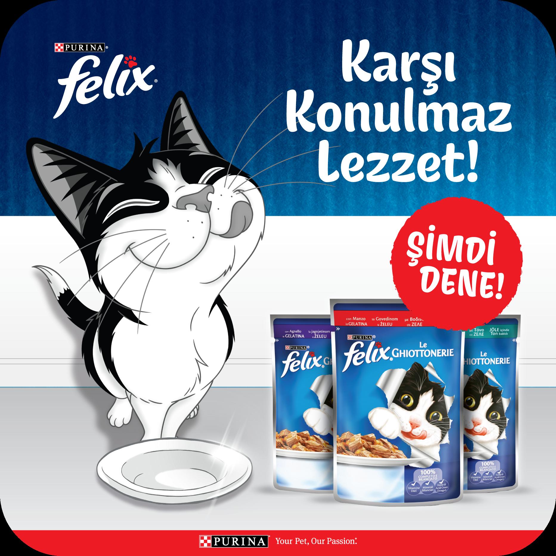 """Felix'ten Kediler için """"Karşı Konulmaz Lezzet"""""""