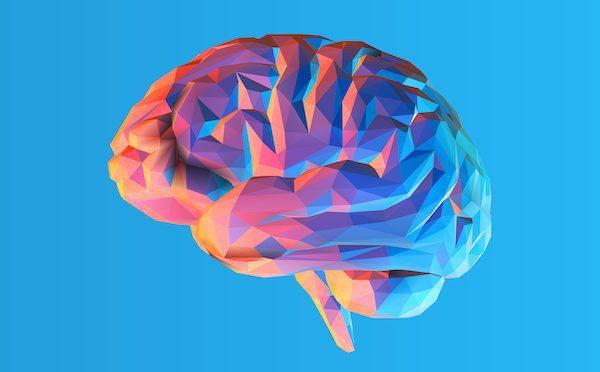 Google, Harvard ile Birlikte 225 Milyon Görüntüden İnsan Beyninin Üç Boyutlu Haritasını Oluşturdu