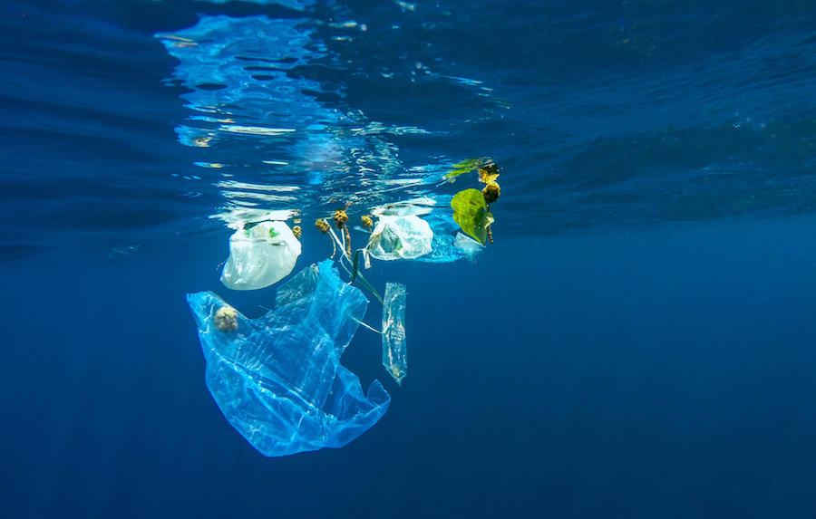 Markalar, Plastik Kirliliğine Karşı Harekete Geçiyor