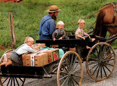 67629124.fDjTrjLo.AmishFamily
